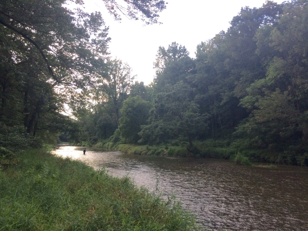 evening on the lower river